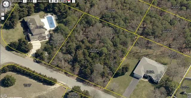66 Cedar Meadow, Cape May Court House, NJ 08210 (MLS #204561) :: Jersey Coastal Realty Group