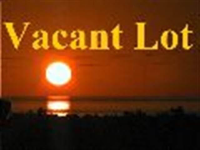 1120 De Hirsch, Woodbine, NJ 08270 (MLS #212487) :: The Oceanside Realty Team