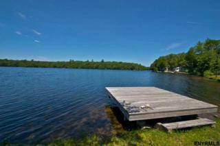 526 Dyken Pond Rd, Petersburgh, NY 12138 (MLS #201701835) :: Weichert Realtors®, Expert Advisors