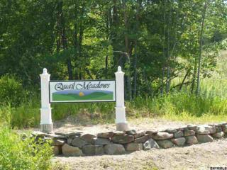 0 Quail Meadow Dr, Poestenkill, NY 12140 (MLS #201702478) :: Weichert Realtors®, Expert Advisors