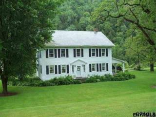 2054 State Route 313, Salem, NY 12865 (MLS #201704787) :: Weichert Realtors®, Expert Advisors