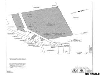 25 Daniels Rd, Saratoga Springs, NY 12865 (MLS #201705108) :: Weichert Realtors®, Expert Advisors