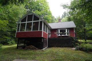 165 Barkley Lake Rd, Salem, NY 12865 (MLS #201709746) :: Weichert Realtors®, Expert Advisors