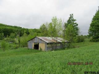 746 Mill Pond Rd, Sharon, NY 13459 (MLS #201710082) :: Weichert Realtors®, Expert Advisors