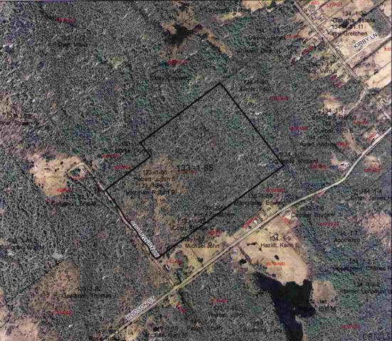 0 Cole La, Johnsburg, NY 12297 (MLS #201327785) :: 518Realty.com Inc