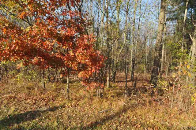 Lot #3 Snake Hill Rd, Glenville, NY 12302 (MLS #201422714) :: Carrow Real Estate Services