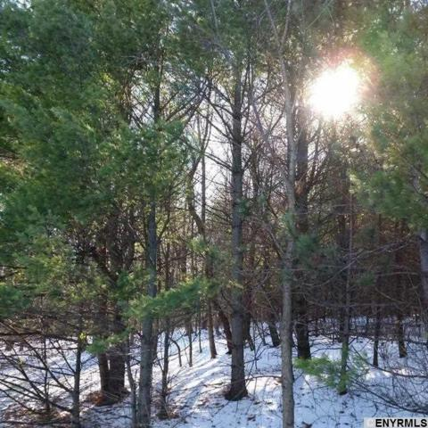 State Route 23, Acra, NY 12405 (MLS #201812569) :: 518Realty.com Inc