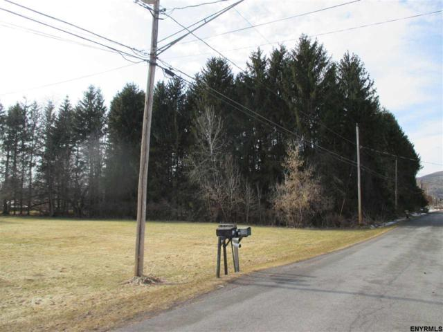 Lot #1 Squaw Trl, Middleburgh, NY 12122 (MLS #201813050) :: 518Realty.com Inc