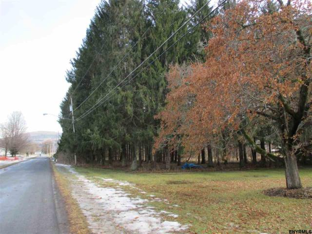 Lot #3 Squaw Trl, Middleburgh, NY 12122 (MLS #201813057) :: 518Realty.com Inc