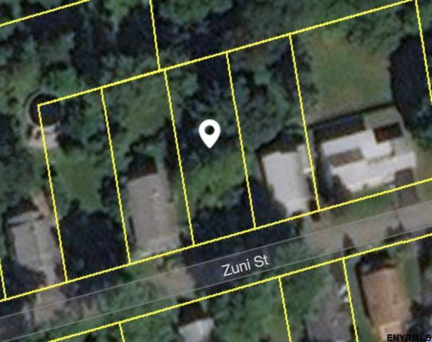 10 Zuni St, Albany, NY 12208 (MLS #201813231) :: 518Realty.com Inc