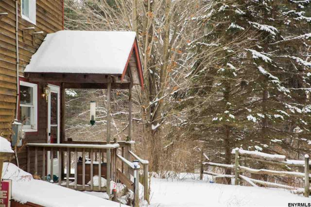 126 Charles Olds Rd, Thurman, NY 12810 (MLS #201814374) :: CKM Team Realty