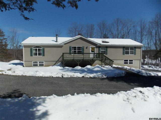 274 Vly Rd, Freehold, NY 12431 (MLS #201814520) :: CKM Team Realty