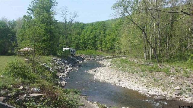 2983 State Route 145, Preston Hollow, NY 12469 (MLS #201819986) :: 518Realty.com Inc