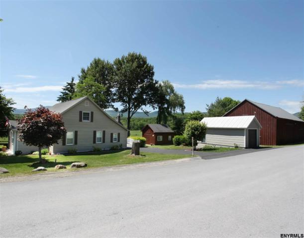 309 Stonitch Rd, East Durham, NY 12423 (MLS #201821806) :: CKM Team Realty