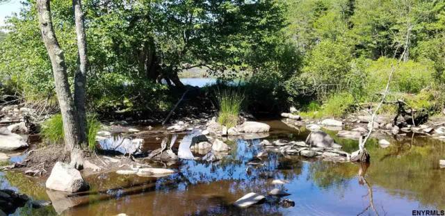 177 South Long Pond Rd, Grafton, NY 12052 (MLS #201822468) :: CKM Team Realty