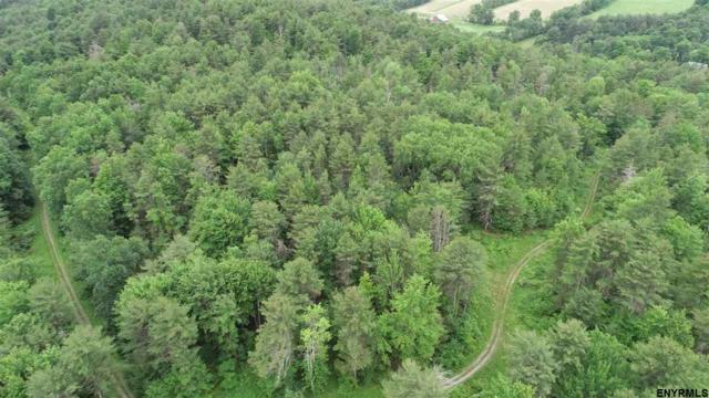70 acres Lawson Lake Rd, Coeymans, NY 12067 (MLS #201822955) :: 518Realty.com Inc
