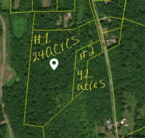 377-2 Bunker Hill Rd, Schodack, NY 12123 (MLS #201823238) :: 518Realty.com Inc