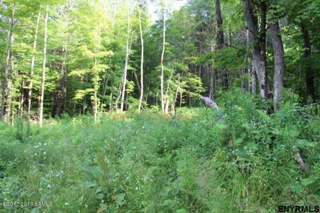 0000 State Route 28, Weavertown, NY 12886 (MLS #201823546) :: 518Realty.com Inc