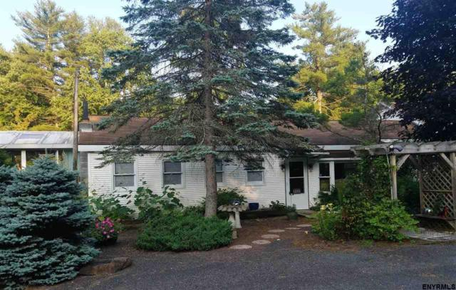 46 Honey Hollow Rd, Earlton, NY 12508 (MLS #201825033) :: 518Realty.com Inc