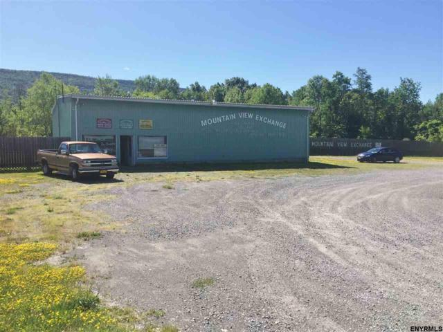 4774 State Route 30, Schoharie, NY 12157 (MLS #201825181) :: Victoria M Gettings Team