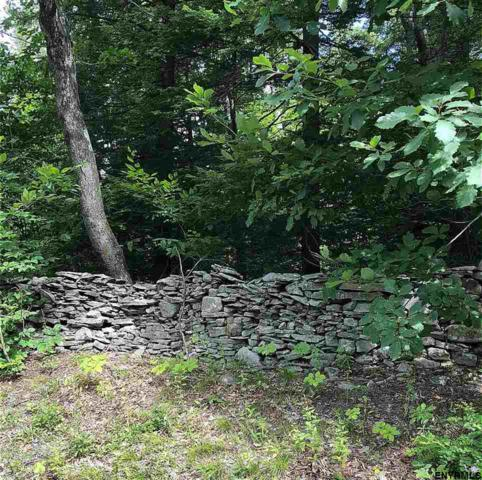 92 Old Stonewall Rd, New Baltimore, NY 12124 (MLS #201825583) :: Victoria M Gettings Team