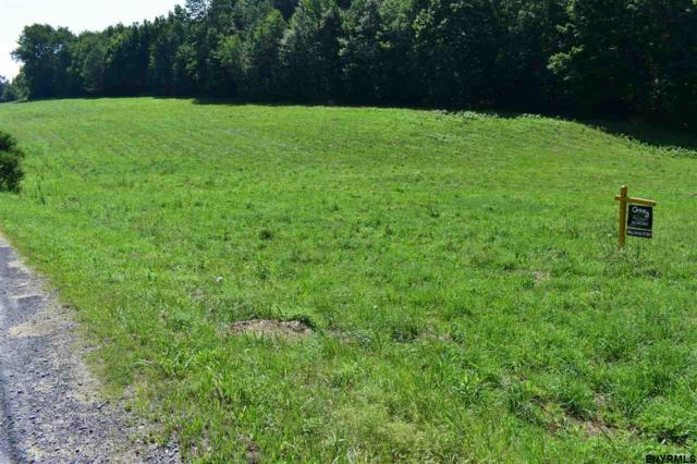 0 State Route 10, Summit, NY 12175 (MLS #201826115) :: 518Realty.com Inc