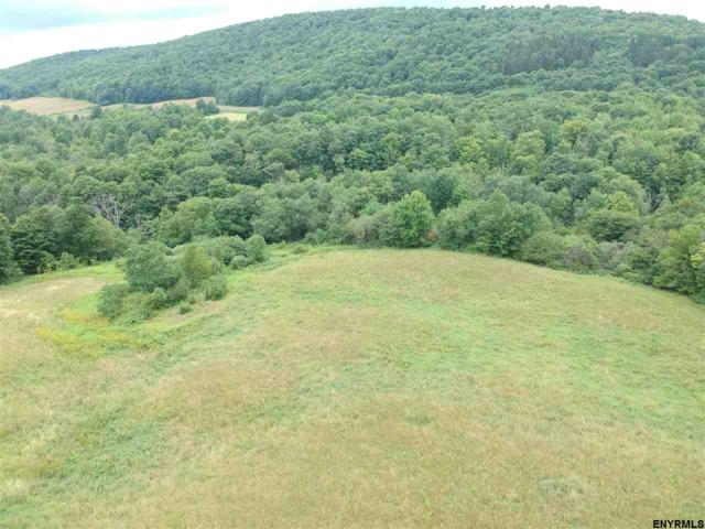 0 State Route 165, Roseboom, NY 13450 (MLS #201826322) :: 518Realty.com Inc