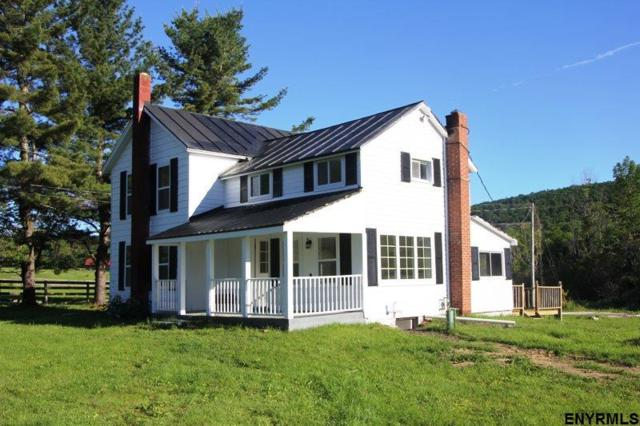 530 Ecker Hollow Rd, Middleburgh, NY 12122 (MLS #201826894) :: 518Realty.com Inc