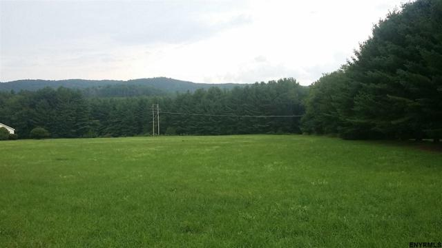 1446 Route 9, New Lebanon, NY 12125 (MLS #201827150) :: 518Realty.com Inc