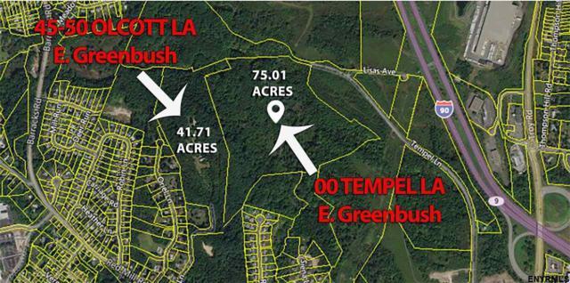 00 Tempel La, East Greenbush, NY 12144 (MLS #201827561) :: Picket Fence Properties