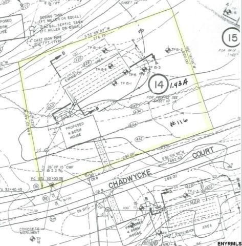116 Chadwycke Ct, North Chatham, NY 12132 (MLS #201829650) :: CKM Team Realty