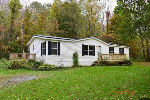 129 Palmer Rd, Richmondville, NY 12149 (MLS #201830888) :: Victoria M Gettings Team