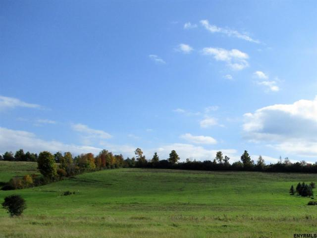 Lot 8 Schoharie Turnpike, Duanesburg, NY 12053 (MLS #201830927) :: Victoria M Gettings Team
