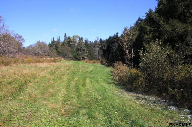 Cotton Hill Rd, Middleburgh, NY 12122 (MLS #201831655) :: Victoria M Gettings Team
