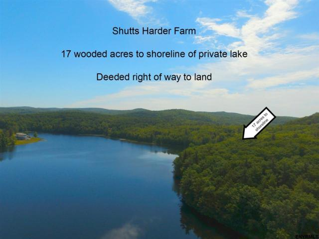 234 Harder Rd, Ghent, NY 12075 (MLS #201831690) :: Picket Fence Properties