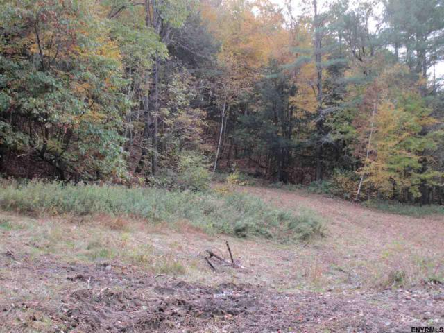 0 Cotton Hill Rd, Middleburgh, NY 12122 (MLS #201832131) :: 518Realty.com Inc