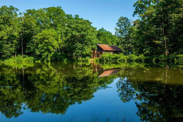 96 Mirror Lake Rd, Climax, NY 12042 (MLS #201832567) :: Weichert Realtors®, Expert Advisors