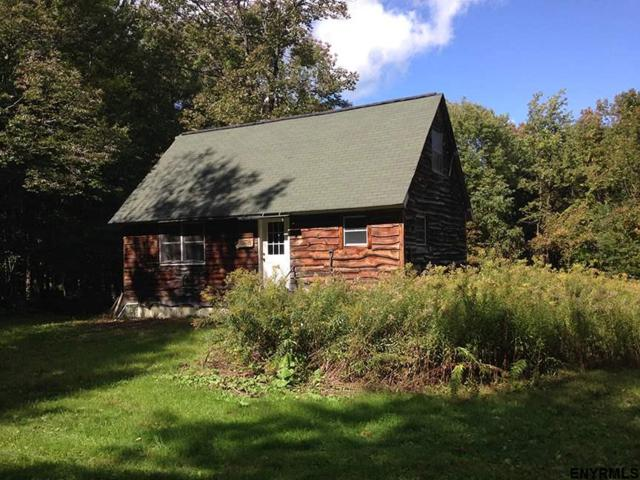 344 Peterson Ct, Putnam Station, NY 12861 (MLS #201833087) :: 518Realty.com Inc