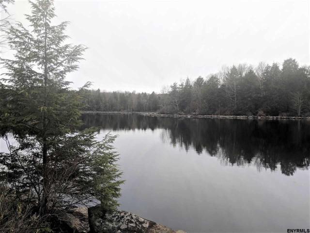 316 Pond View Rd, Petersburgh, NY 12138 (MLS #201833159) :: Weichert Realtors®, Expert Advisors