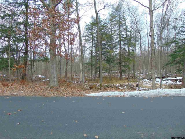 00 Lower Flat Rock Rd, Delmar, NY 12054 (MLS #201833959) :: 518Realty.com Inc