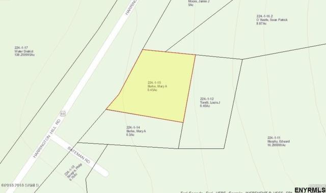 1952 Harrington Hill Rd, Warrensburg, NY 12885 (MLS #201834678) :: Weichert Realtors®, Expert Advisors