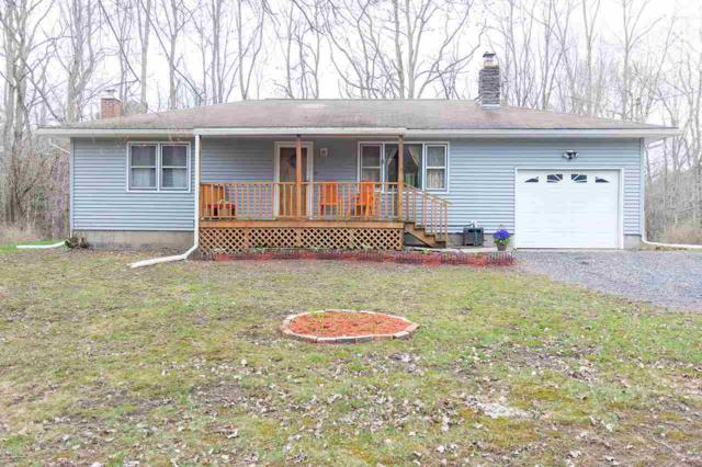 339 All Peat Beds Rd, Earlton, NY 12058 (MLS #201916855) :: CKM Team Realty