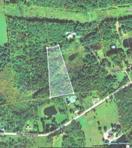 0 Potter Mountain Rd, Conesville, NY 12076 (MLS #201916863) :: CKM Team Realty