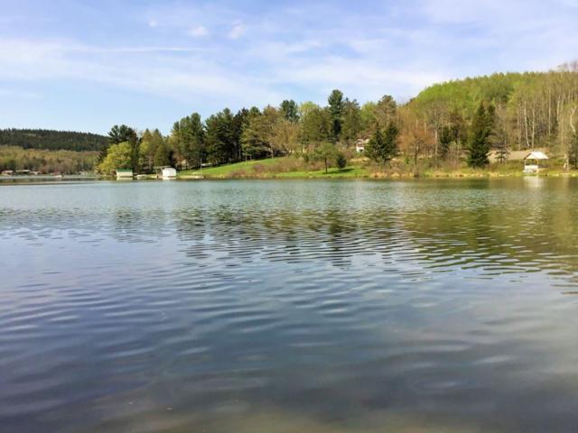 x Spruce Lake Rd, Summit, NY 12175 (MLS #201917071) :: Weichert Realtors®, Expert Advisors