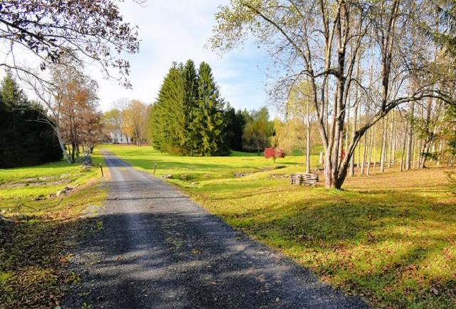 367 County Route 312, Westerlo, NY 12193 (MLS #201917625) :: Victoria M Gettings Team