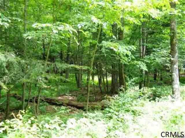 0 Wood Rd, Harpersfield, NY 13786 (MLS #201919560) :: Picket Fence Properties