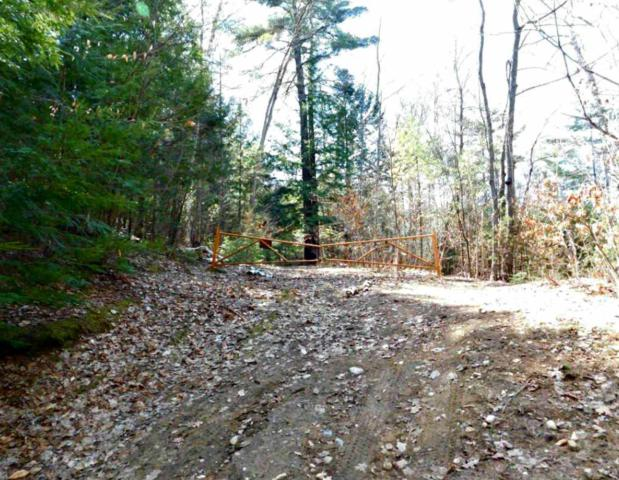 0 Bloody Pond Rd, Lake George, NY 12845 (MLS #201919622) :: 518Realty.com Inc