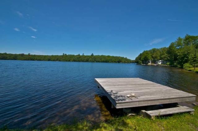 524 Dyken Pond Rd, Petersburgh, NY 12138 (MLS #201919630) :: Picket Fence Properties