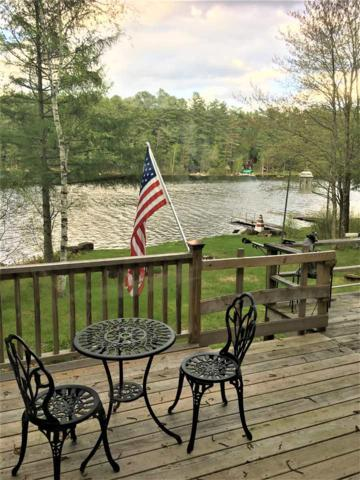 193 Chester Shores Dr, Chestertown, NY 12817 (MLS #201920484) :: 518Realty.com Inc