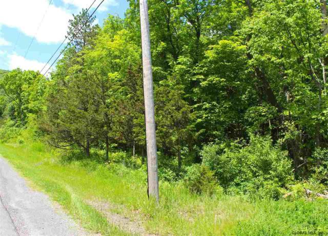 0 New Scotland Rd, Voorheesville, NY 12186 (MLS #201921559) :: Picket Fence Properties